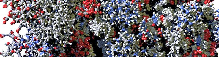 Obrazek posiada pusty atrybut alt; plik o nazwie CST-Covid-19-Viral-Factors-2.png